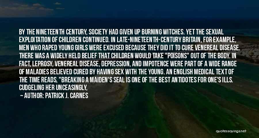 Venereal Disease Quotes By Patrick J. Carnes