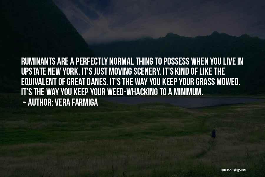 Vera Farmiga Quotes 1765814