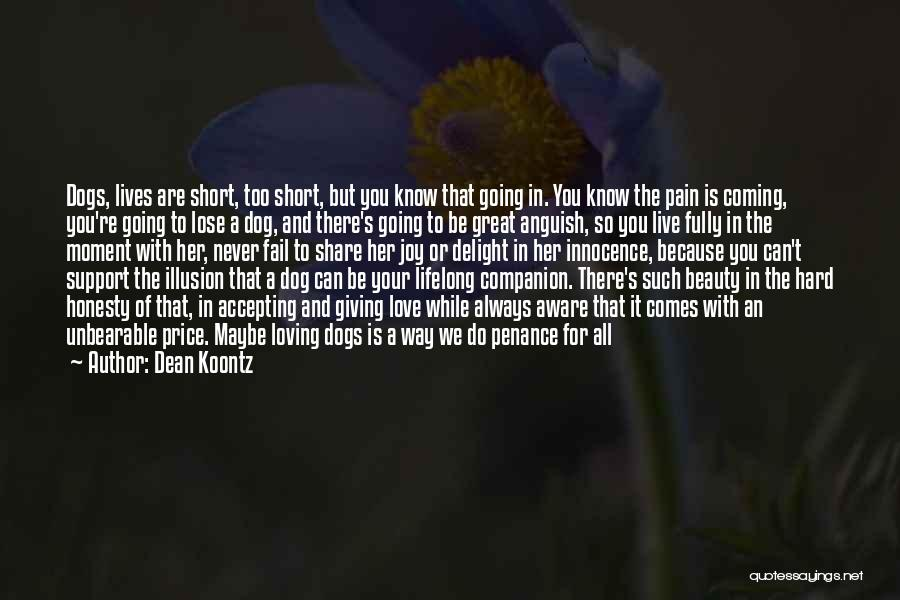 Very Short Dog Quotes By Dean Koontz