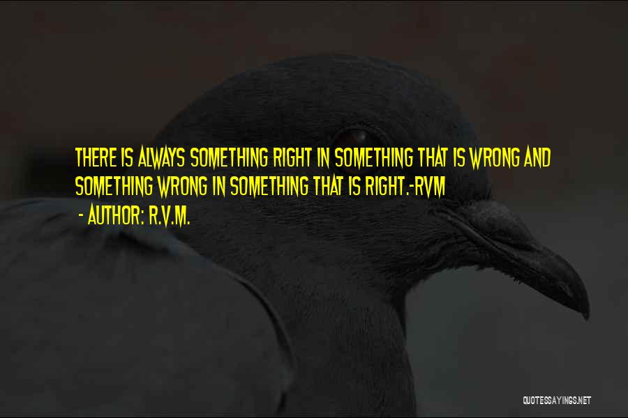 V'ger Quotes By R.v.m.