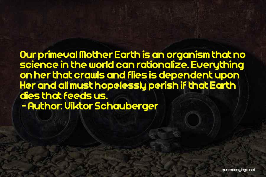 Viktor Schauberger Quotes 1224403