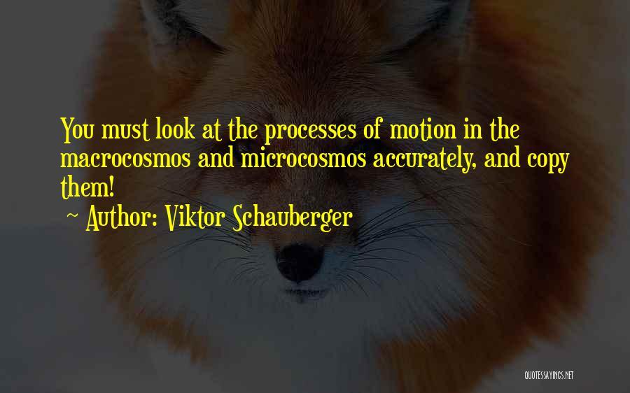 Viktor Schauberger Quotes 1884947