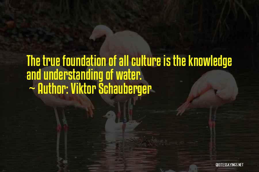 Viktor Schauberger Quotes 501603