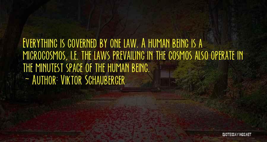 Viktor Schauberger Quotes 652477