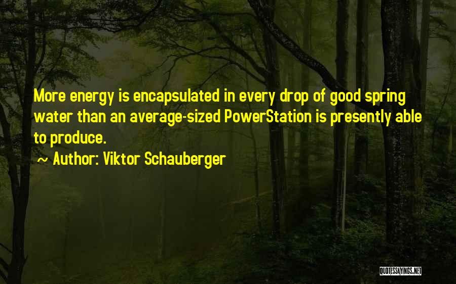 Viktor Schauberger Quotes 900255