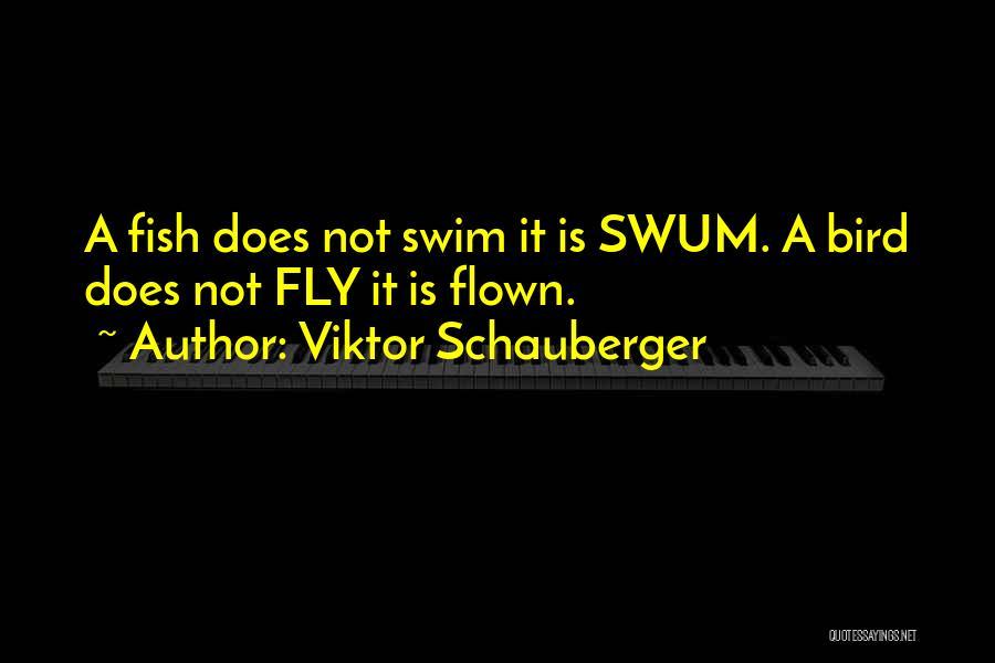 Viktor Schauberger Quotes 940051