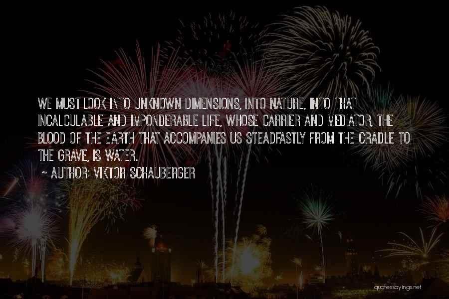 Viktor Schauberger Quotes 940598