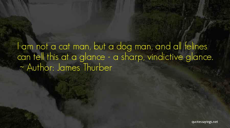 Vindictive Quotes By James Thurber