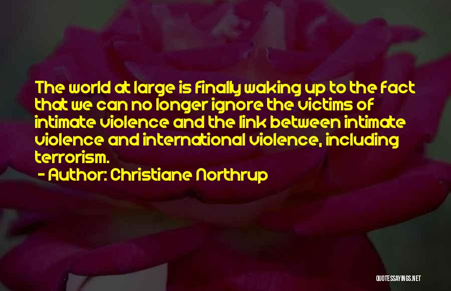 Violence And Terrorism Quotes By Christiane Northrup