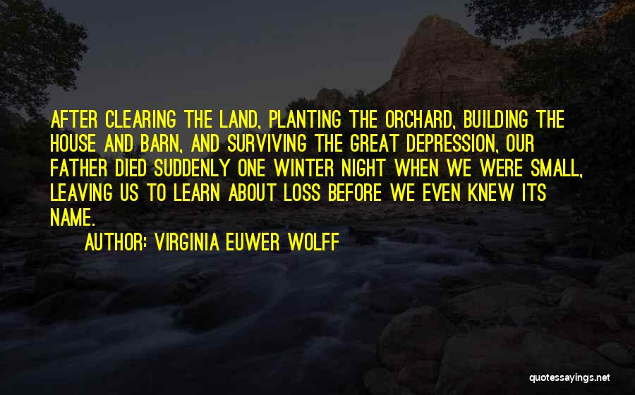 Virginia Euwer Wolff Quotes 960312