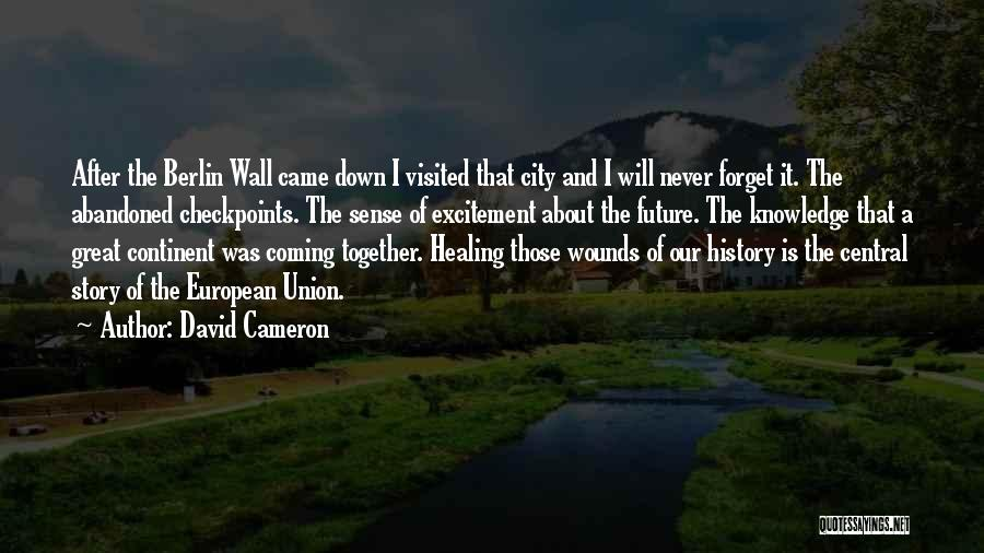 Visited Quotes By David Cameron