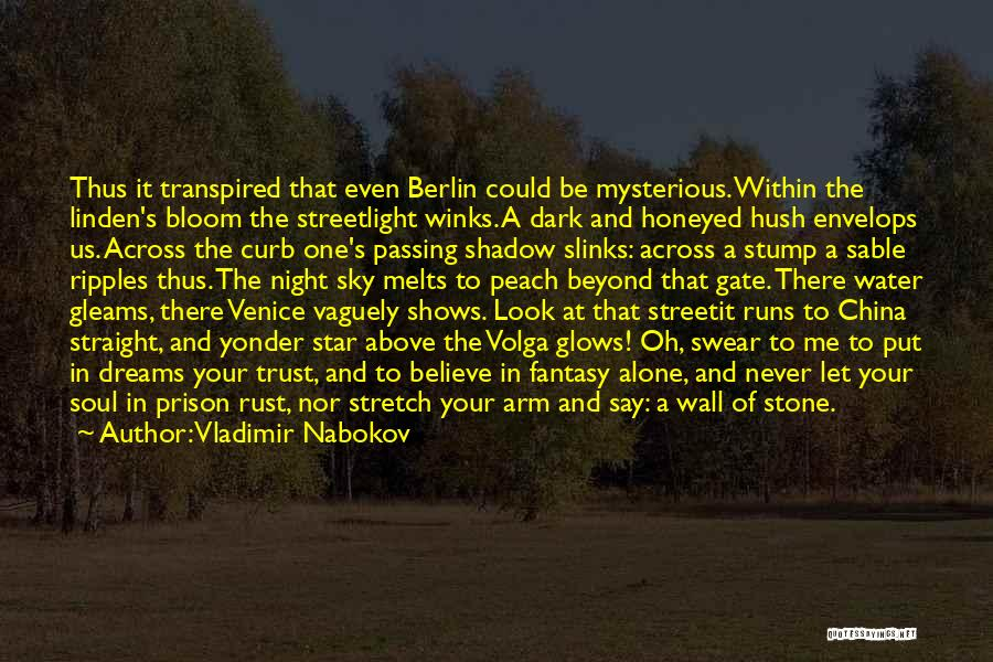 Vladimir Nabokov Quotes 1079111