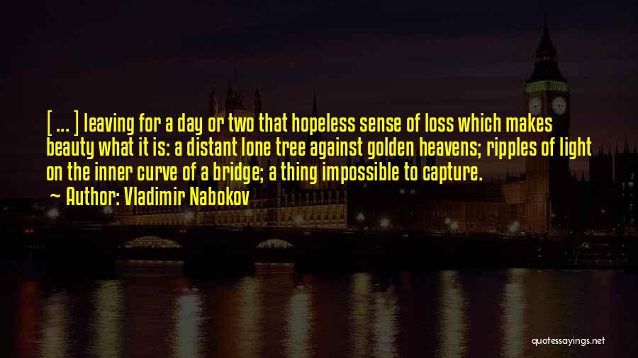 Vladimir Nabokov Quotes 119709