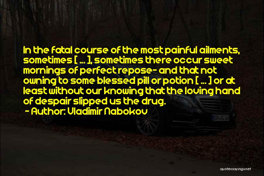 Vladimir Nabokov Quotes 157025