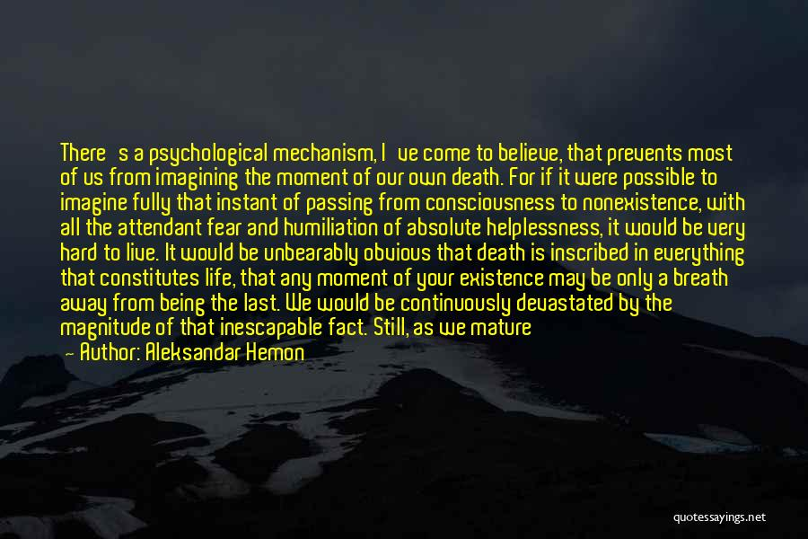 Void Life Quotes By Aleksandar Hemon