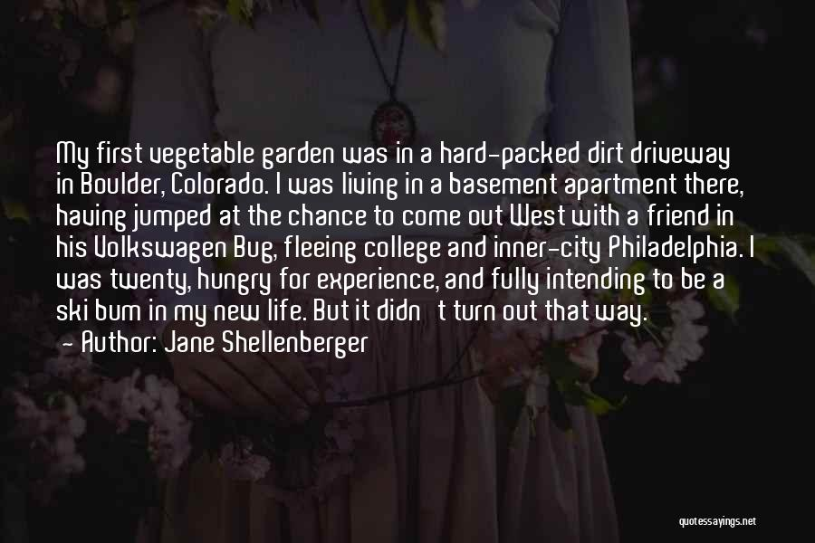 Volkswagen Quotes By Jane Shellenberger