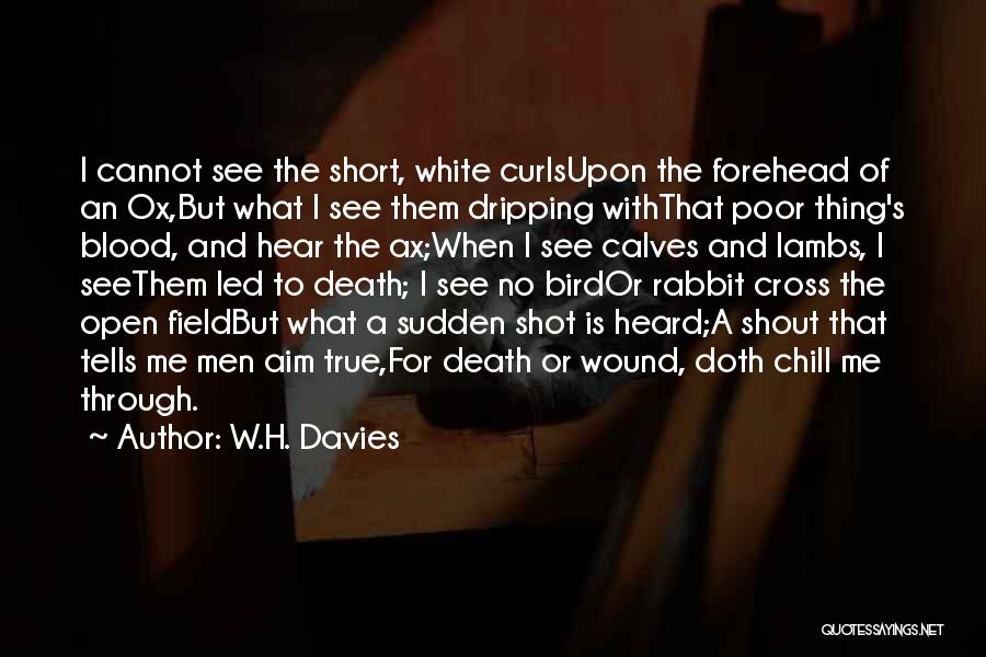 W.H. Davies Quotes 374725