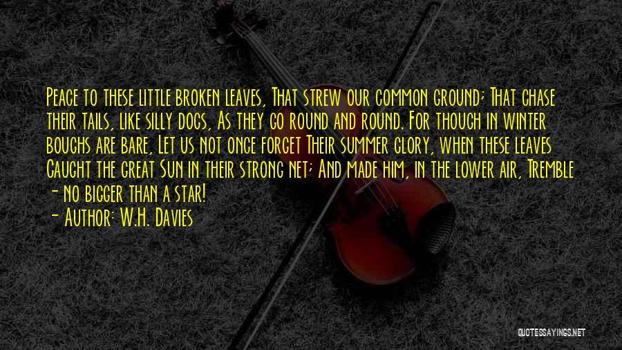 W.H. Davies Quotes 436654