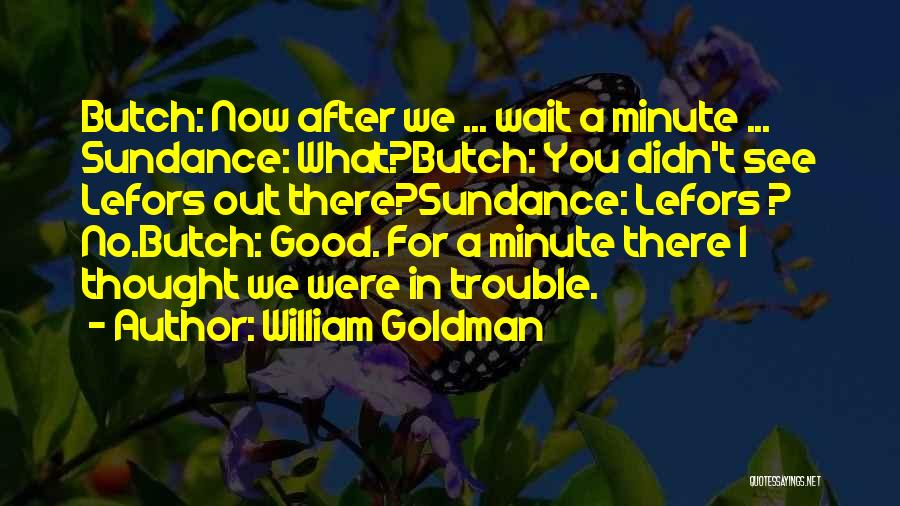 Wait What Quotes By William Goldman