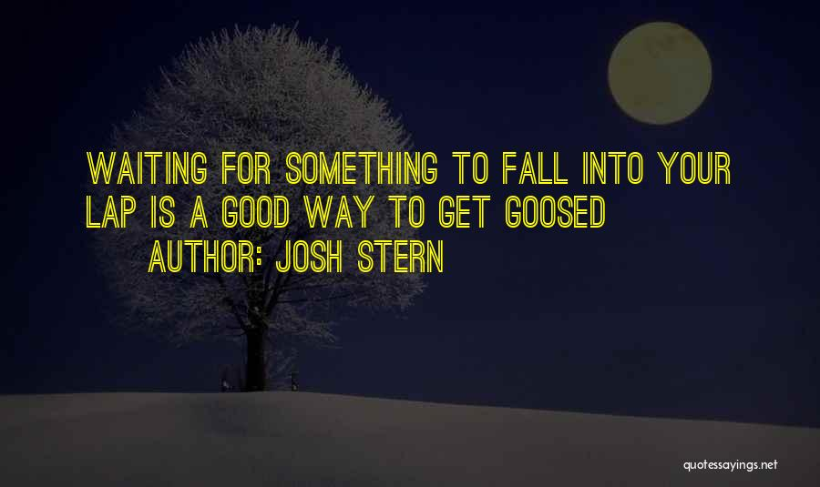 Waiting For Something Good Quotes By Josh Stern