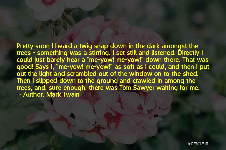 Waiting For Something Good Quotes By Mark Twain