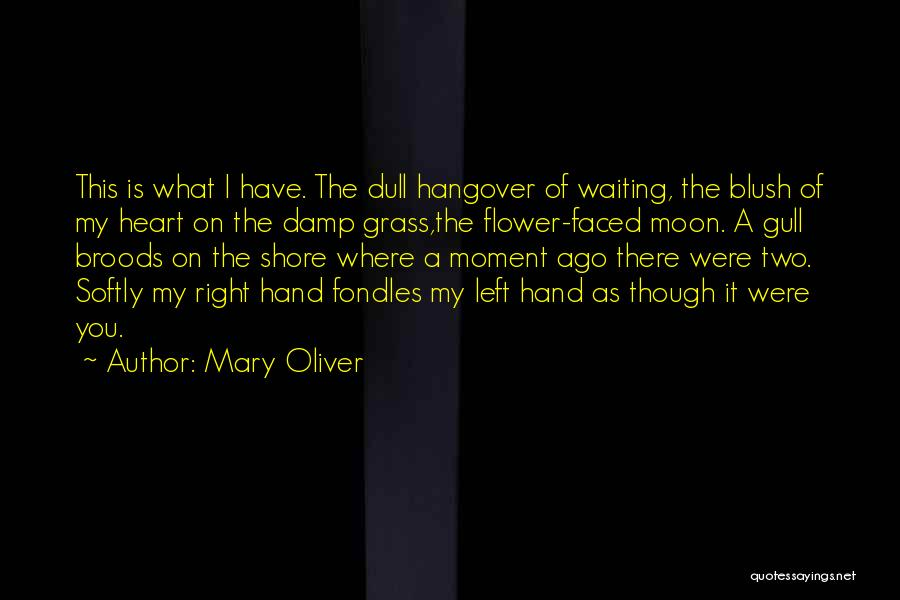 Waiting For U Quotes By Mary Oliver