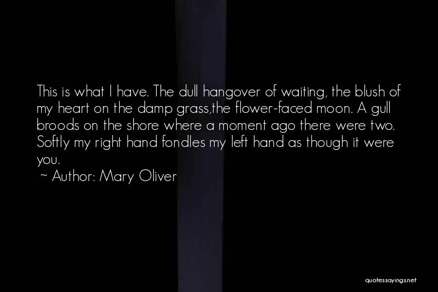 Waiting For Your Ex Quotes By Mary Oliver