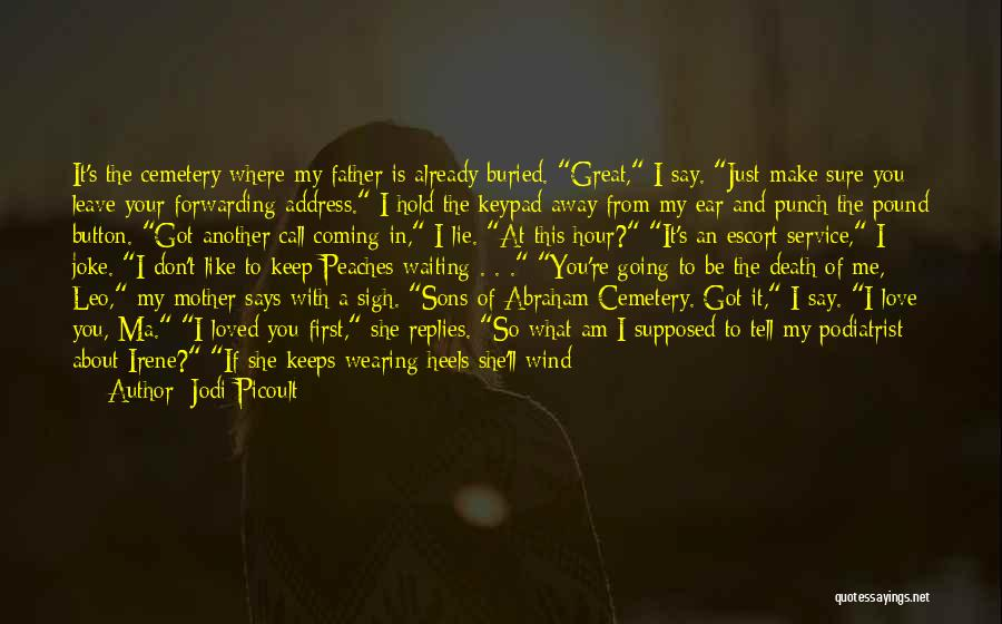 Waiting To Say I Love You Quotes By Jodi Picoult