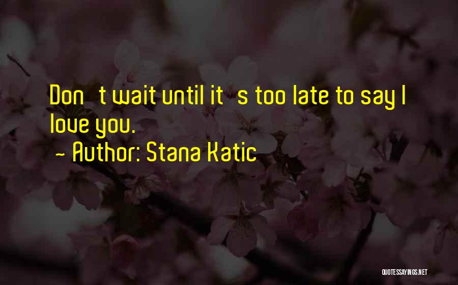 Waiting To Say I Love You Quotes By Stana Katic