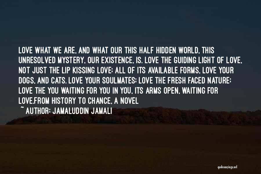 Waiting With Open Arms Quotes By Jamaluddin Jamali