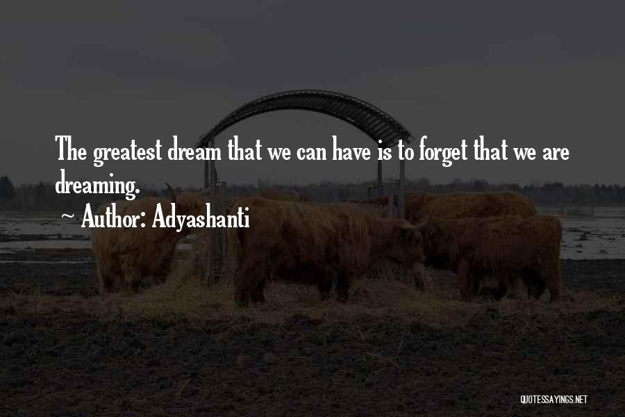 Wake Up Dreaming Quotes By Adyashanti