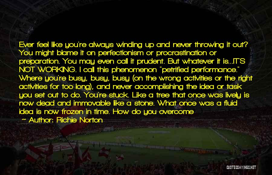 Wake Up Dreaming Quotes By Richie Norton
