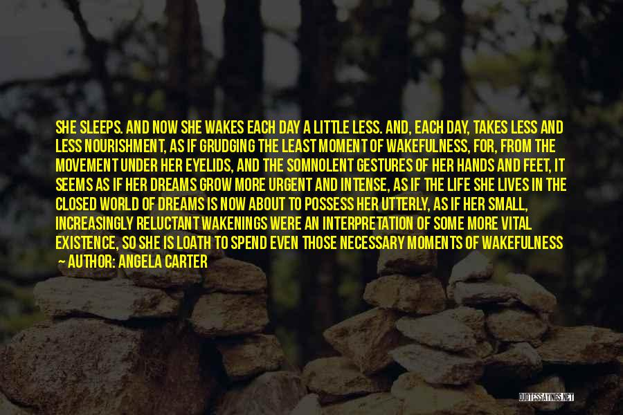 Wakefulness Quotes By Angela Carter