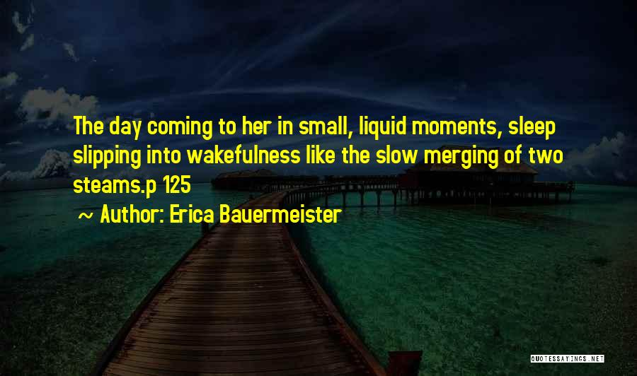 Wakefulness Quotes By Erica Bauermeister