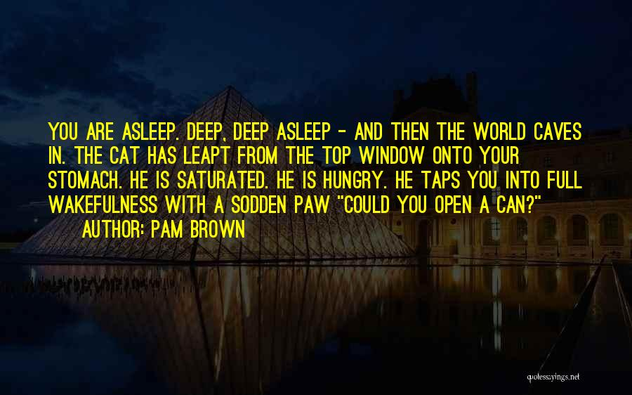 Wakefulness Quotes By Pam Brown