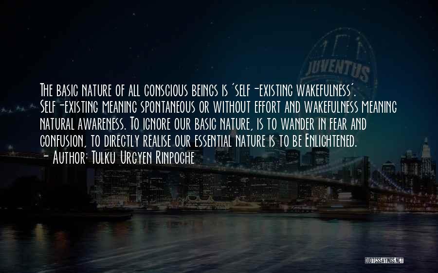 Wakefulness Quotes By Tulku Urgyen Rinpoche