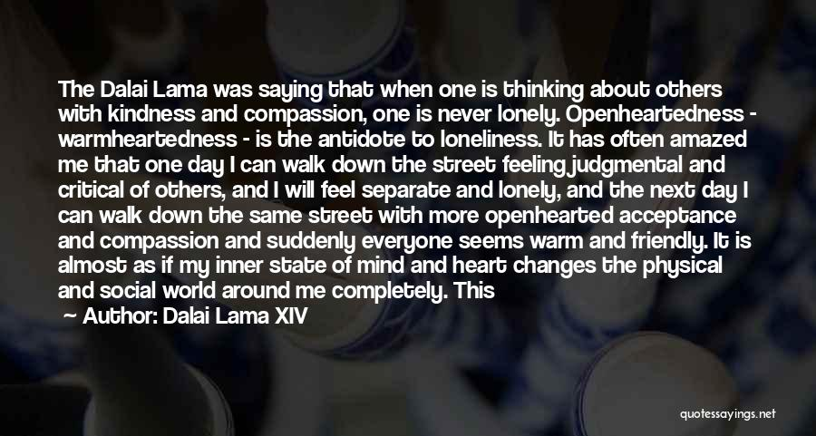 Walk Next To Me Quotes By Dalai Lama XIV