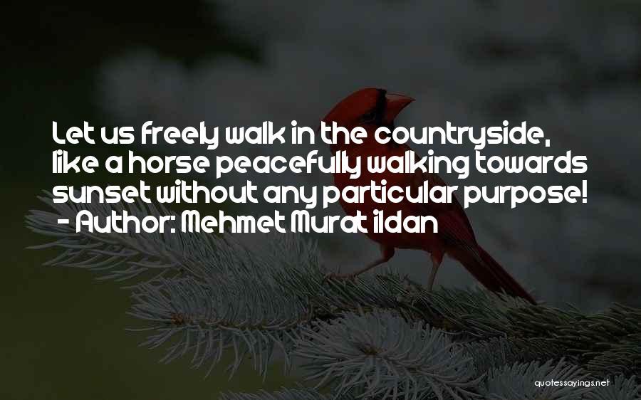 Walking Freely Quotes By Mehmet Murat Ildan