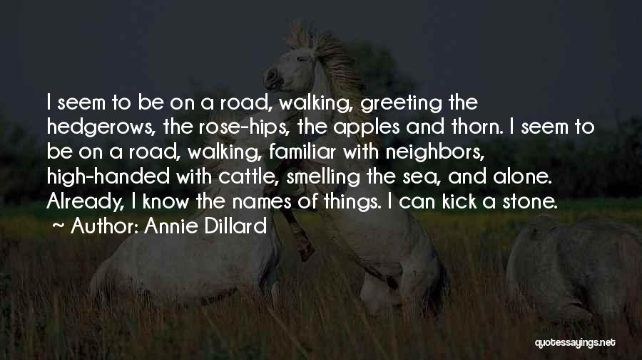 Walking On The Road Quotes By Annie Dillard