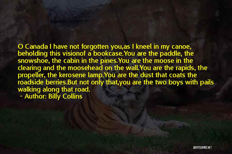 Walking On The Road Quotes By Billy Collins