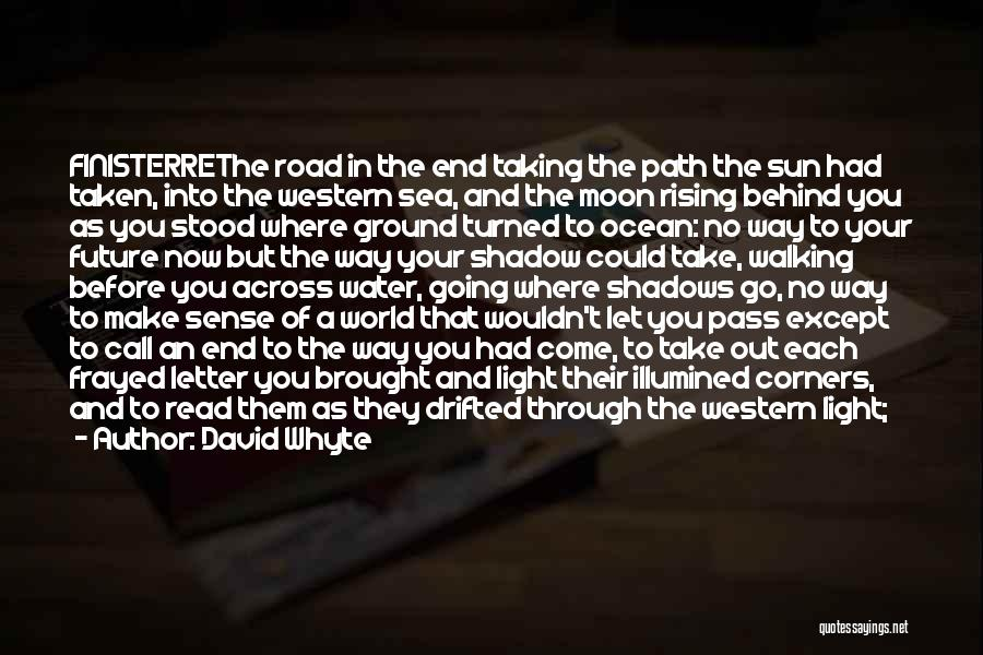Walking On The Road Quotes By David Whyte