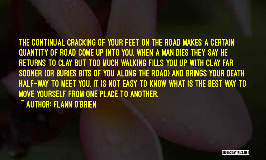 Walking On The Road Quotes By Flann O'Brien