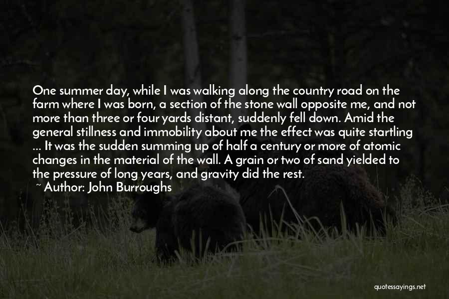 Walking On The Road Quotes By John Burroughs