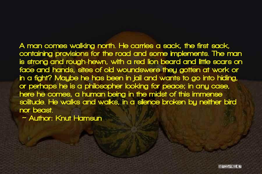 Walking On The Road Quotes By Knut Hamsun