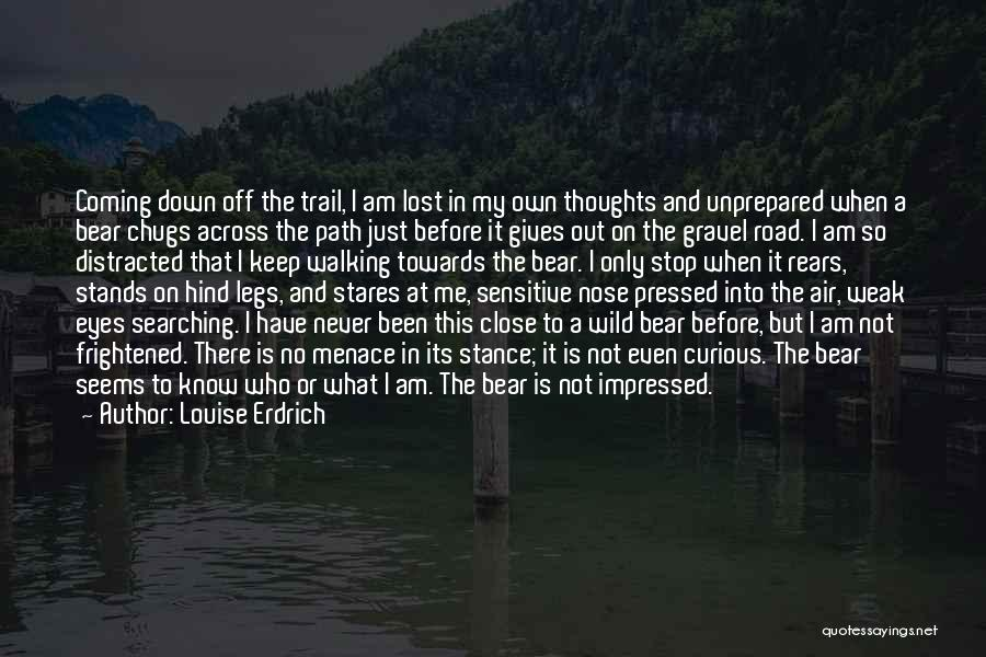 Walking On The Road Quotes By Louise Erdrich