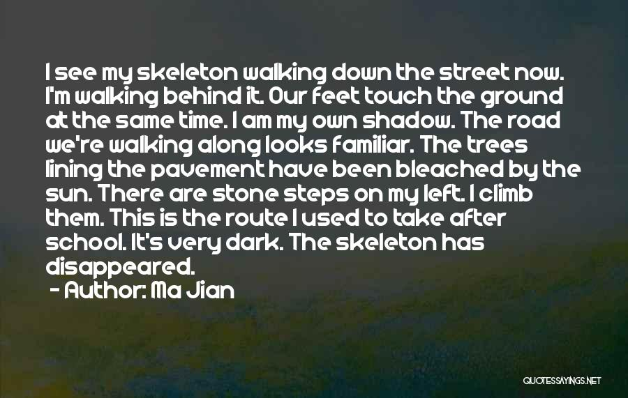 Walking On The Road Quotes By Ma Jian