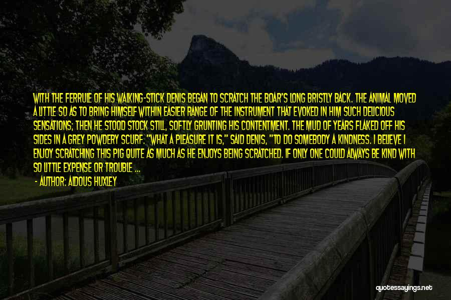Walking Softly Quotes By Aldous Huxley