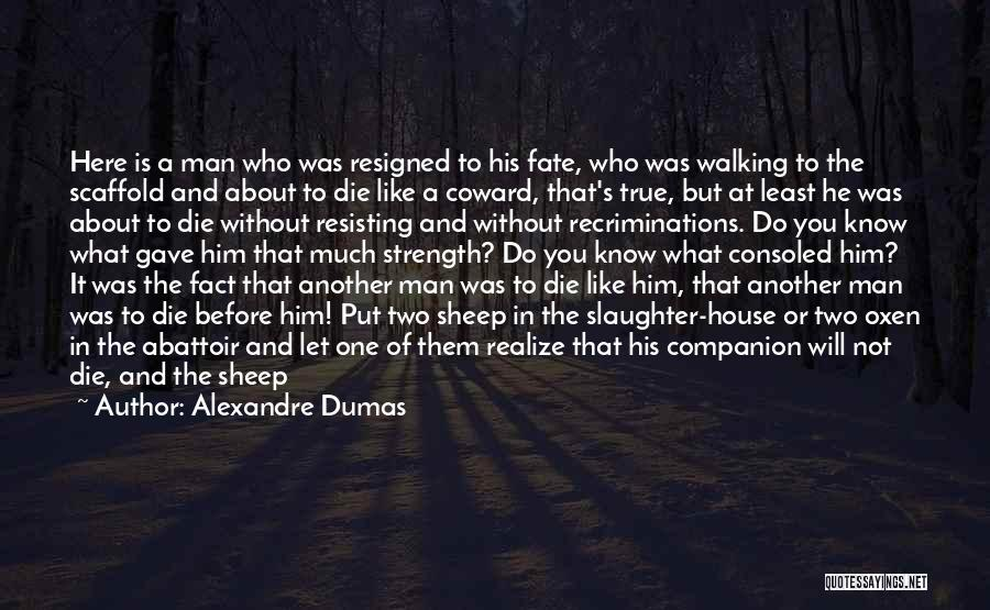 Walking With You Love Quotes By Alexandre Dumas