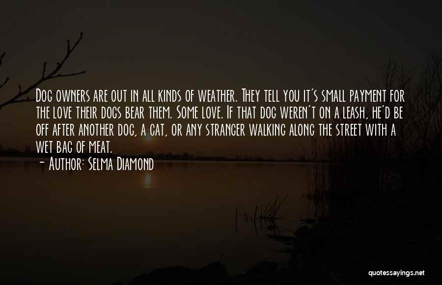Walking With You Love Quotes By Selma Diamond