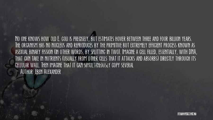 Wall-e Quotes By Eben Alexander